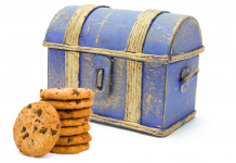 Girl Scout cookie chest ideas