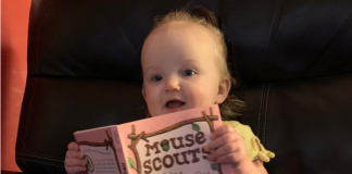 mouse scout baby