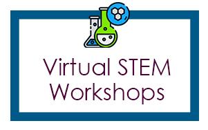 Virtual STEM Workshops
