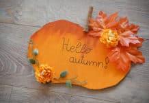 pumkin autumn